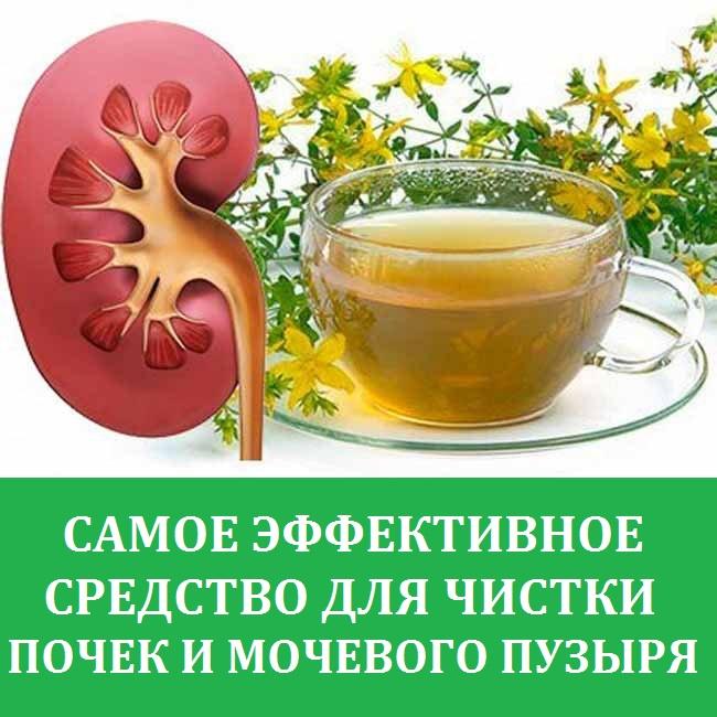 Застуженные почки симптомы и лечение в домашних условиях