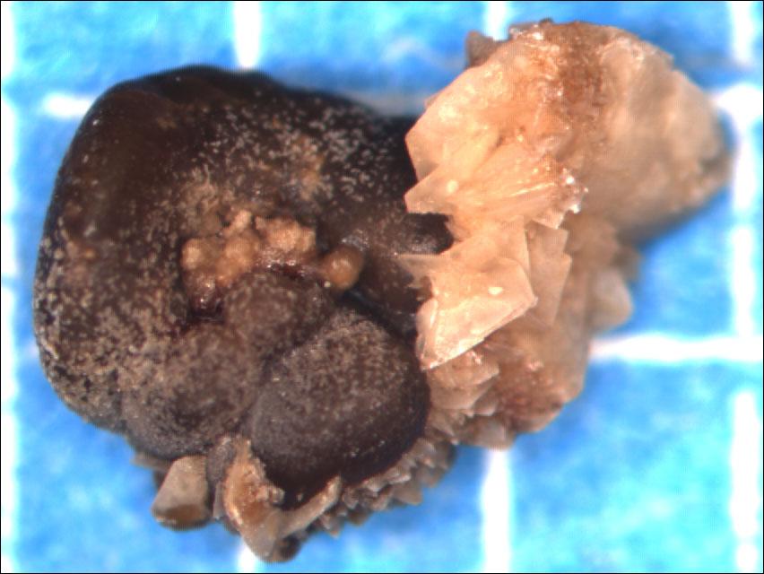 фото камней оксалатовых