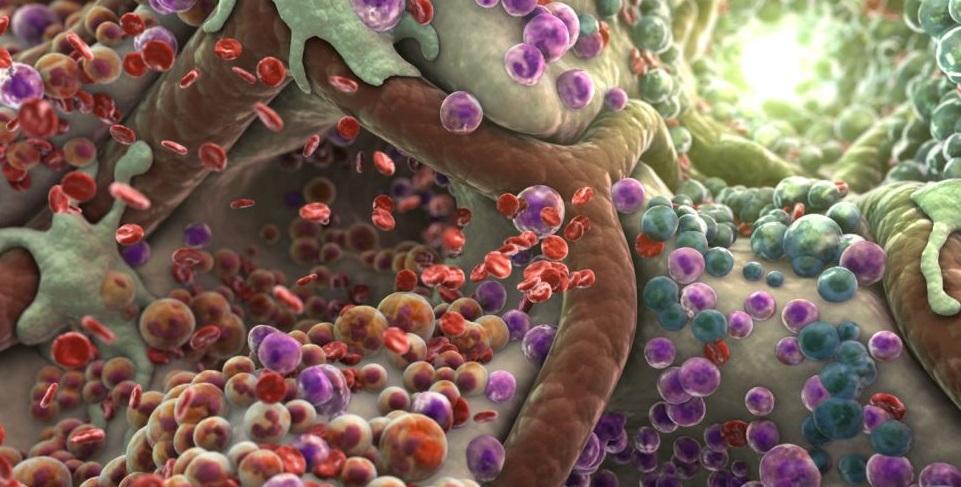 Вид токсинов в организме под микроскопом